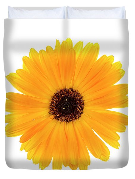 Duvet Cover featuring the photograph Calendula Flower by Elena Elisseeva