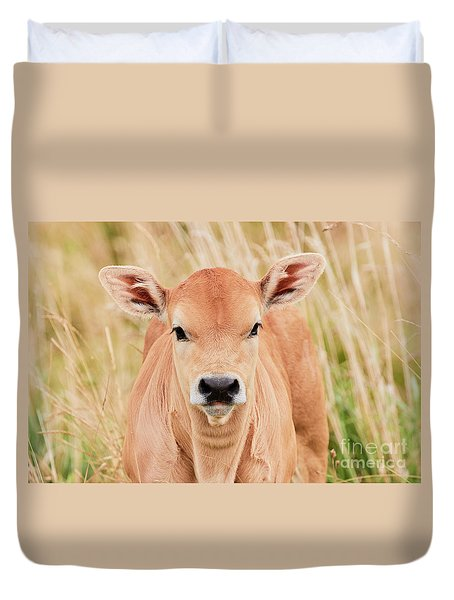 Calf In The High Grass Duvet Cover