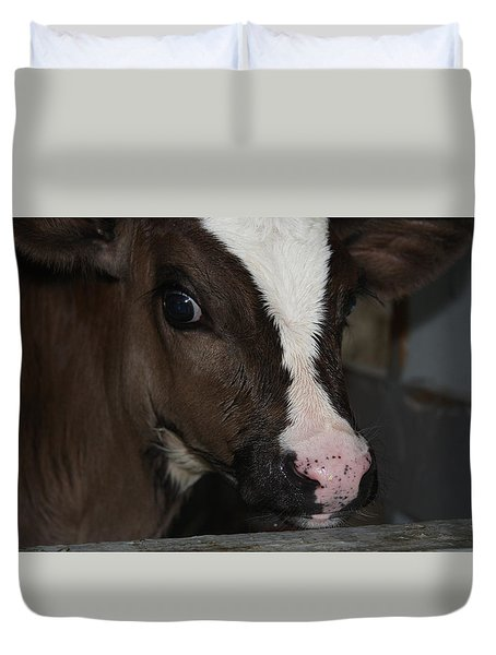 Duvet Cover featuring the photograph Calf Portrait by Vadim Levin