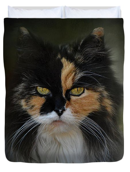 Calico Stare Duvet Cover by Jai Johnson