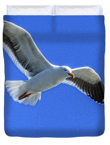 California Gull Duvet Cover by Robert Bales