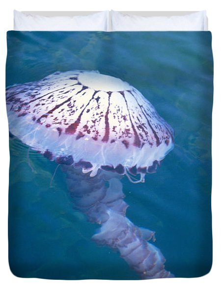 California Marine Life Duvet Cover by Bill Schildge - Printscapes