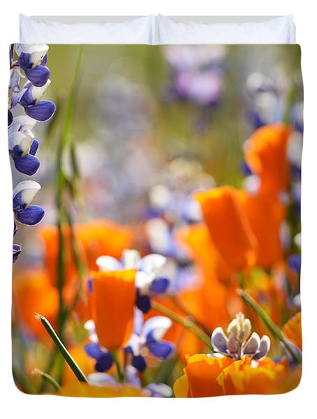 California Poppies And Lupine Duvet Cover