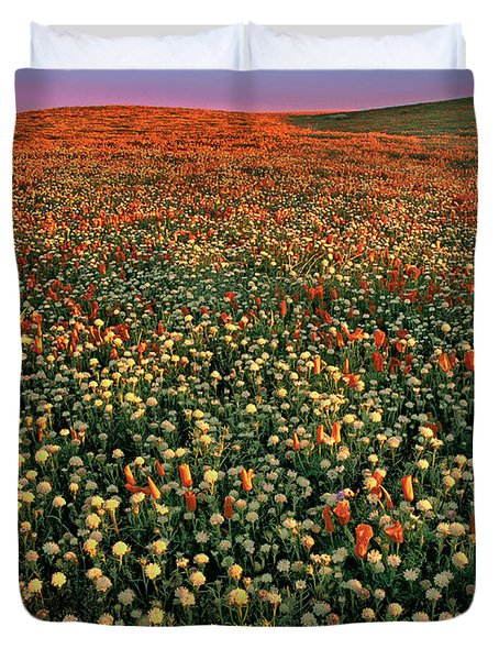 Duvet Cover featuring the photograph California Poppies At Dawn Lancaster California by Dave Welling