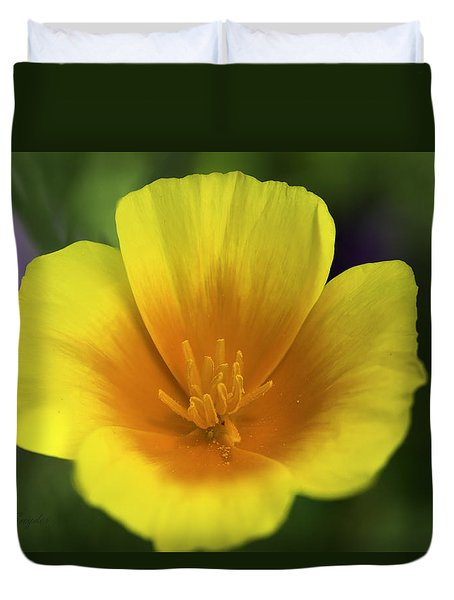 California Poppy 2 Duvet Cover