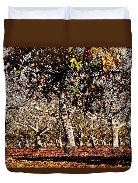 California Walnut Orchard Duvet Cover by Pamela Patch
