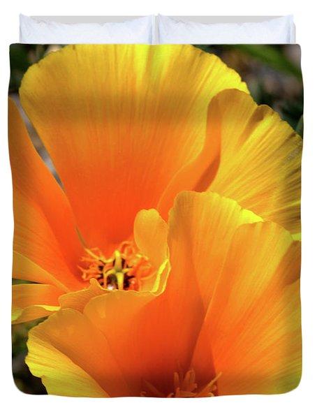 Californian Poppy Duvet Cover by Stephen Melia