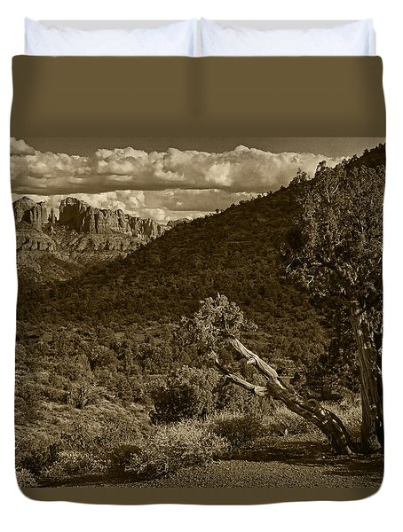 Call Of The Ancients Tint Duvet Cover