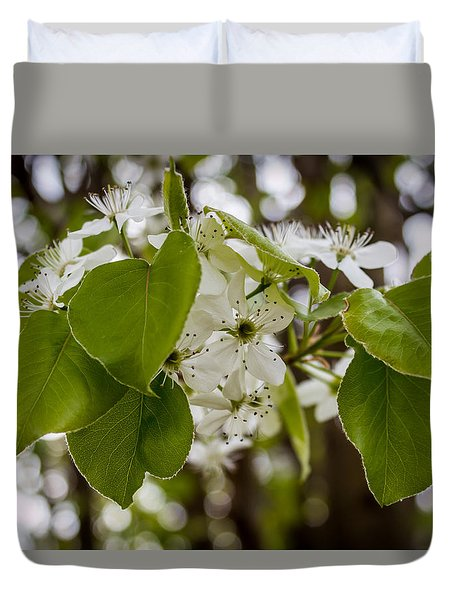 Callery Pear Tree Bloom Duvet Cover