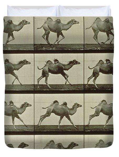 Camel Duvet Cover