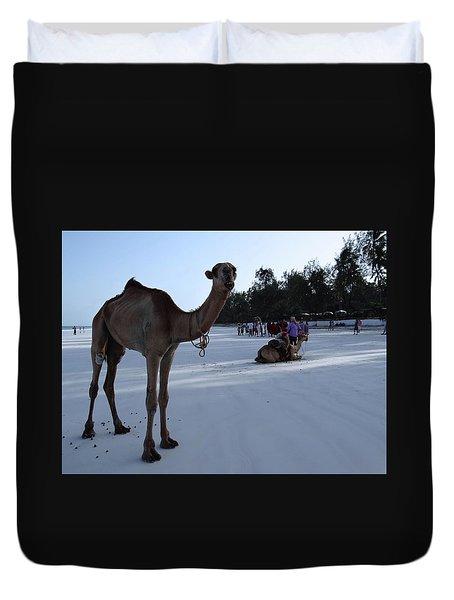 Camel On Beach Kenya Wedding 6 Duvet Cover