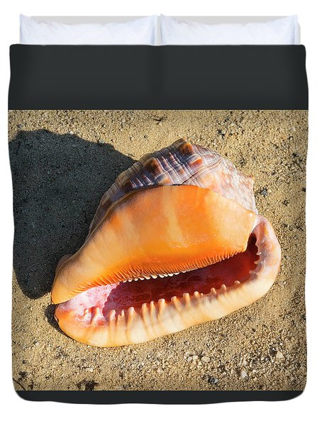 Duvet Cover featuring the photograph Cameo Seashell Cassis Rufa by Frank Wilson