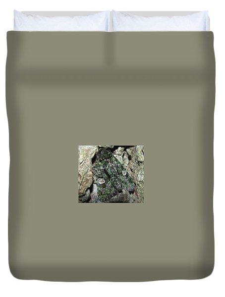 Green Owlet Moth Duvet Cover