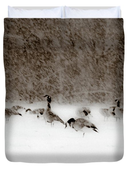Canada Geese Feeding In Winter Duvet Cover