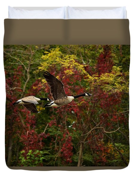 Canada Geese In Autumn Duvet Cover by Angel Cher