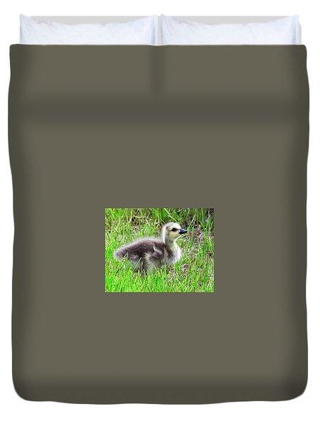 Canada Goose Gosling Duvet Cover