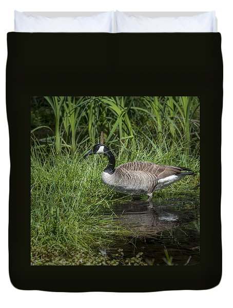 Duvet Cover featuring the photograph Canada Goose by Tyson and Kathy Smith