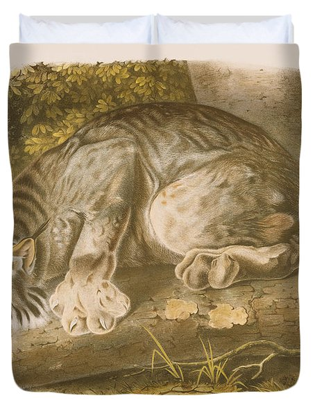 Canada Lynx Duvet Cover by John James Audubon