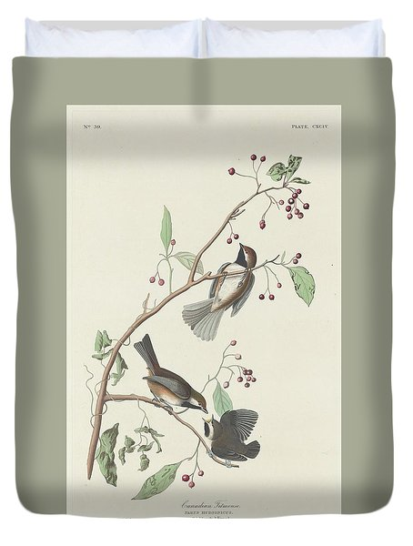 Canadian Titmouse Duvet Cover by Rob Dreyer