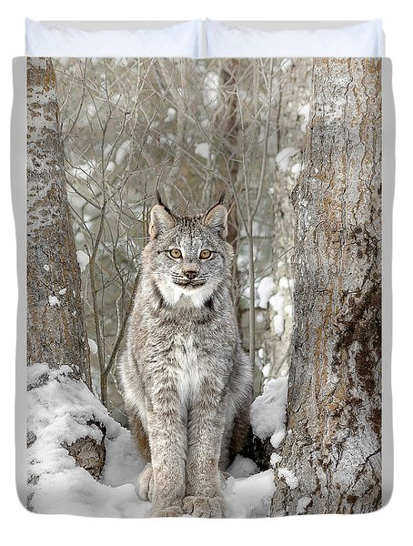 Canadian Wilderness Lynx Duvet Cover