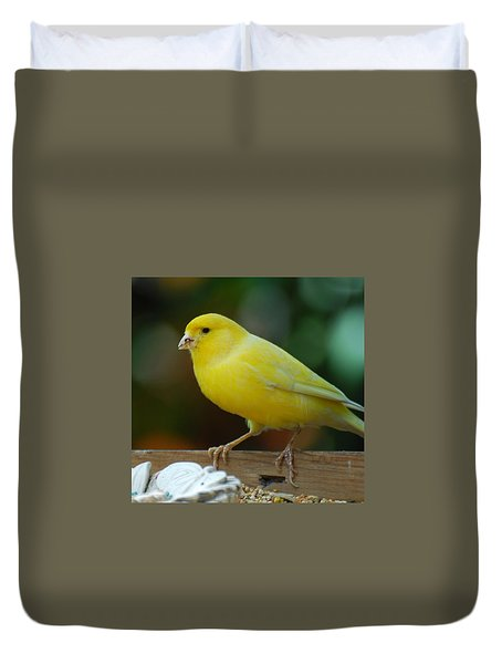 Duvet Cover featuring the photograph Canary Domesticated by Ramona Whiteaker