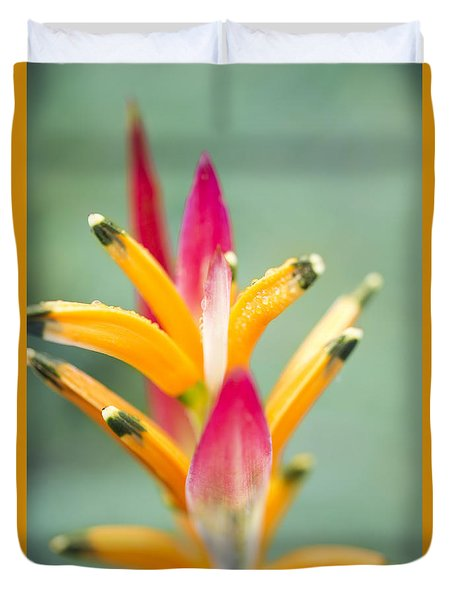 Duvet Cover featuring the photograph Candy Colours - Heliconia Tropical Flower by Sharon Mau