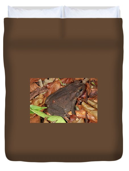 Cane Toad Duvet Cover by Breck Bartholomew