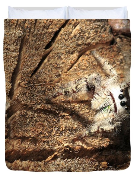 Canopy Jumping Spider Duvet Cover