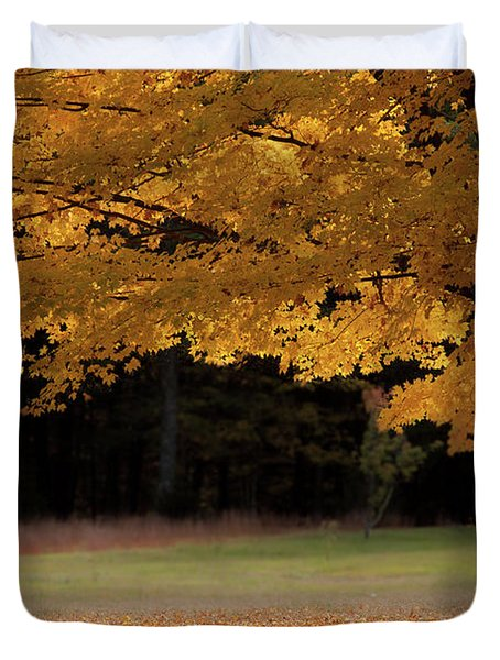 Canopy Of Autumn Gold Duvet Cover