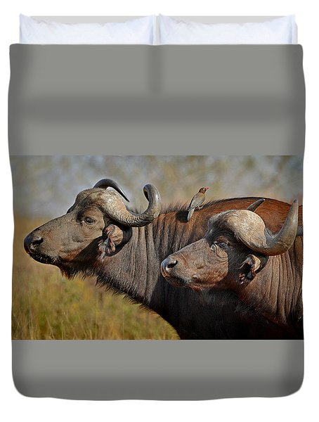 Cape Buffalo And Their Housekeeper Duvet Cover