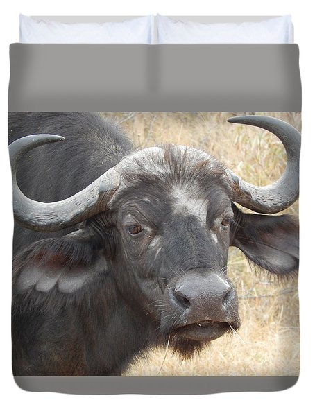 Cape Buffalo Duvet Cover by Patrick Murphy