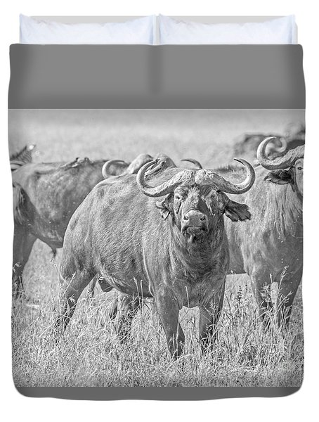 Cape Buffalos In Serengeti Duvet Cover