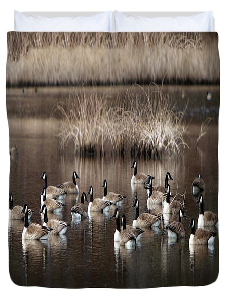 Cape Cod Americana Canada Geese Duvet Cover by Constantine Gregory