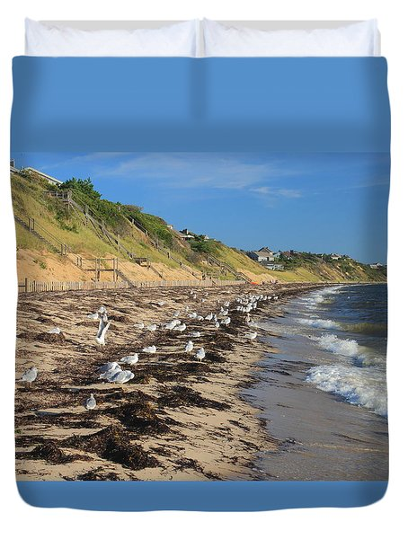 Cape Cod Bay Beach And Gulls Truro  Duvet Cover