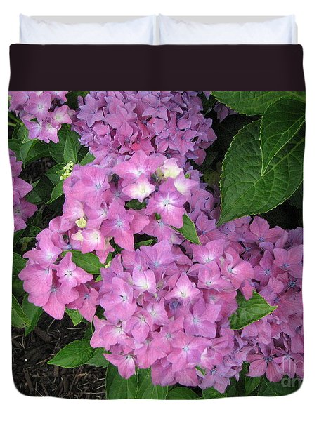 Cape Cod Hydrangeas Duvet Cover