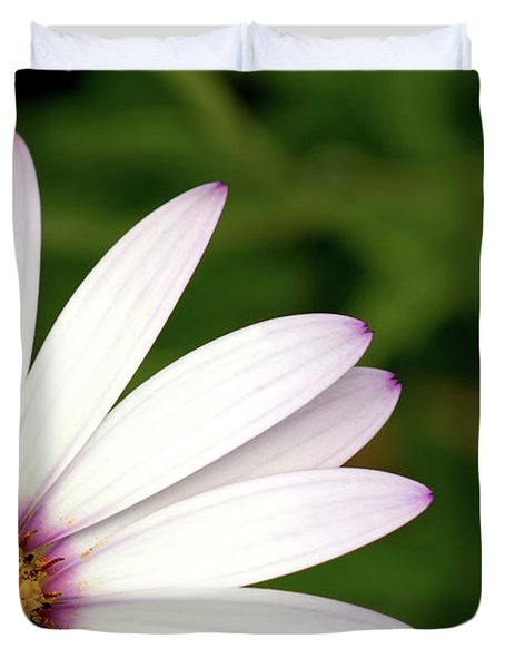 Cape Daisy Duvet Cover