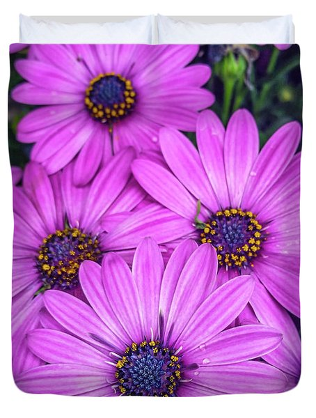 Cape Daisys - Purple Duvet Cover