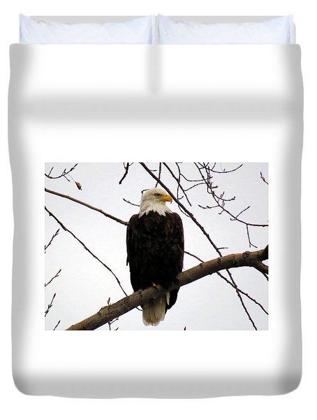 Cape Eagle Duvet Cover