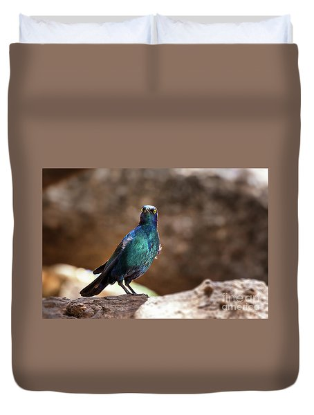Cape Glossy Starling Duvet Cover