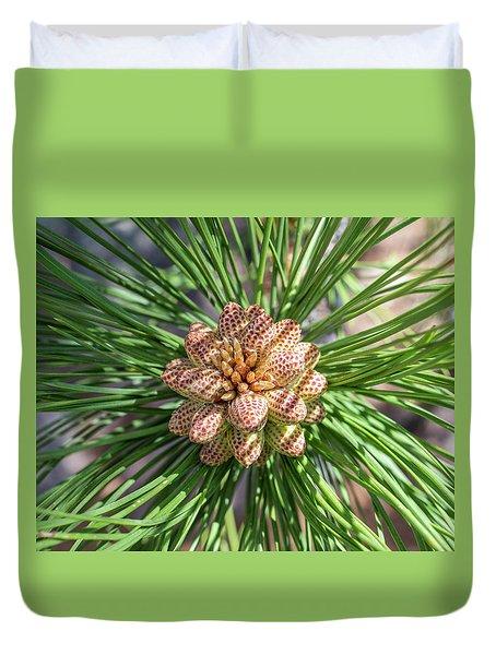 Captivating Pine Duvet Cover