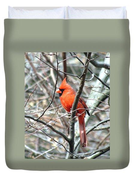 Cardinal 2 Duvet Cover