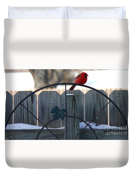 Cardinal 3 Duvet Cover
