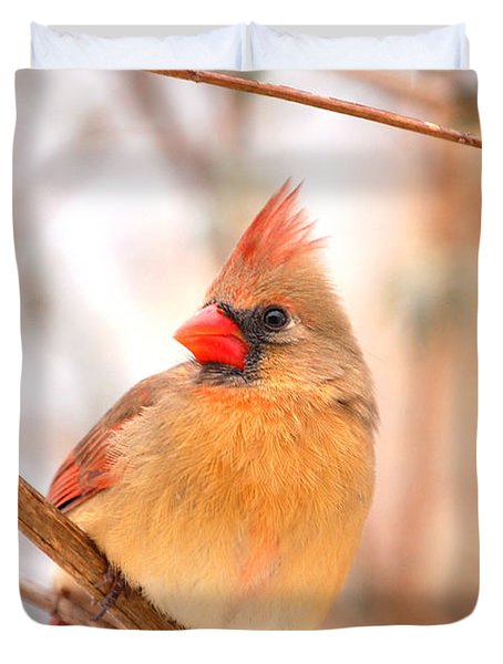 Duvet Cover featuring the photograph Cardinal Bird Female by Peggy Franz