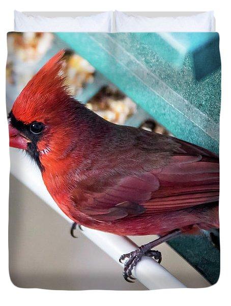 Cardinal Close Up Duvet Cover