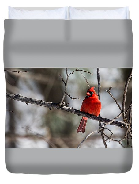 Duvet Cover featuring the photograph Cardinal by Dan Traun