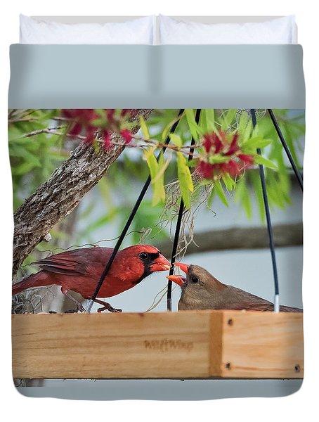 Cardinal Feeding  Duvet Cover
