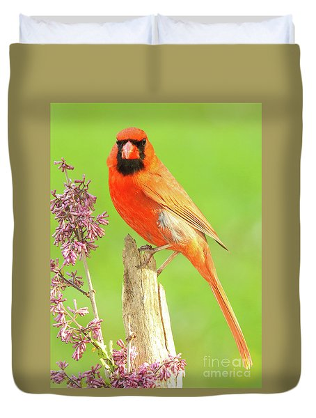 Cardinal Flowery Perch Duvet Cover