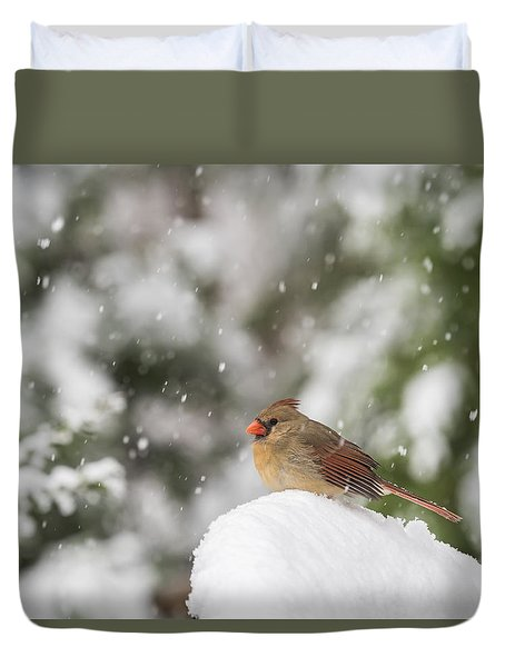 Cardinal In The Snow Duvet Cover