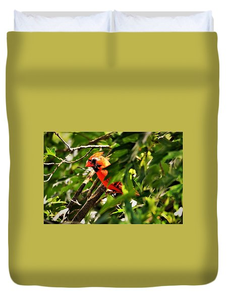 Cardinal In Tree Duvet Cover