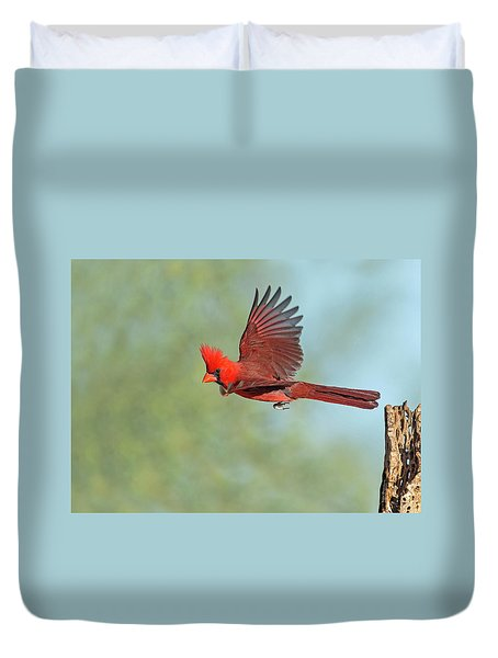 Cardinal On A Mission Duvet Cover